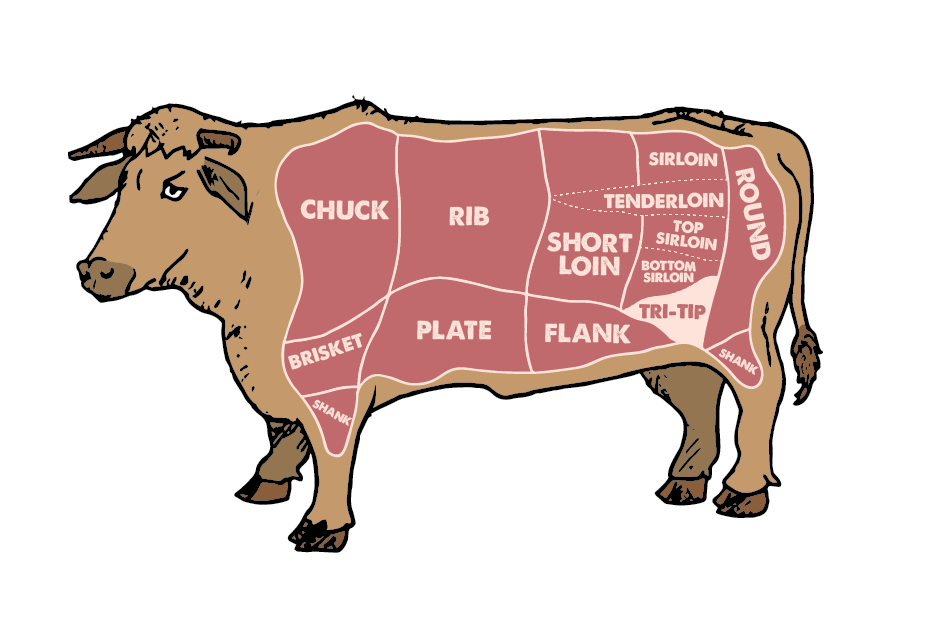 tri tip in beef cuts diagram