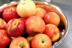 Local organic gala apples