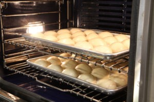 Thanksgiving Rolls in Oven