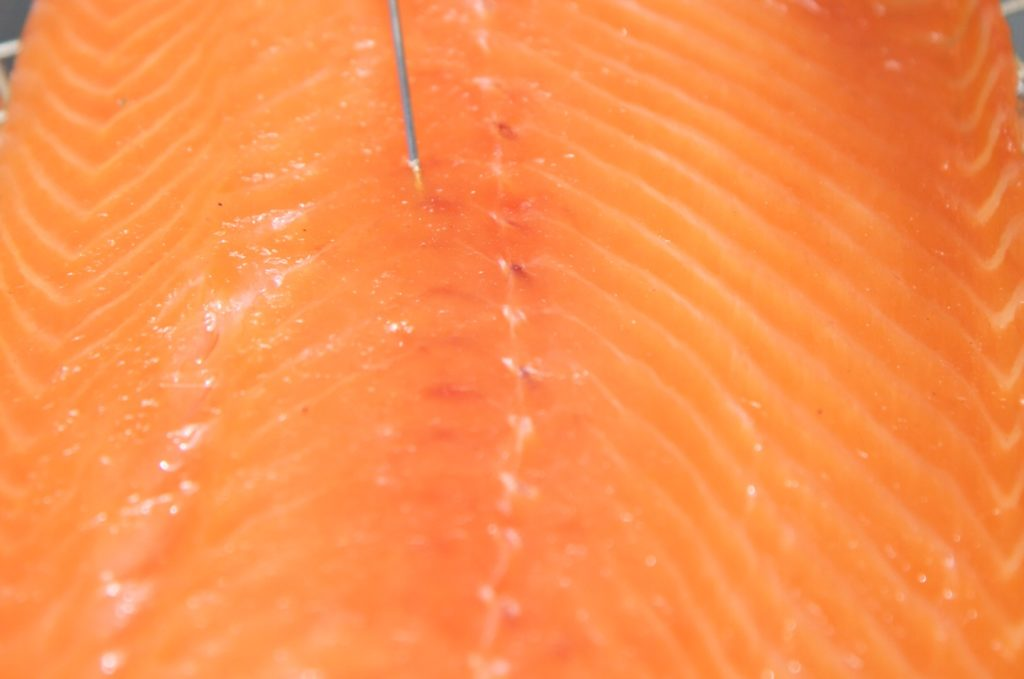 Smoked Salmon Key Temperatures A Recipe Thermoworks
