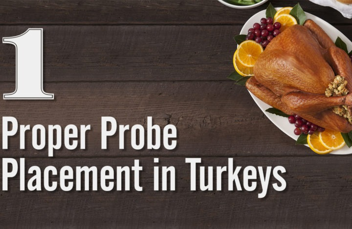 1: Proper Probe Placement in Turkeys