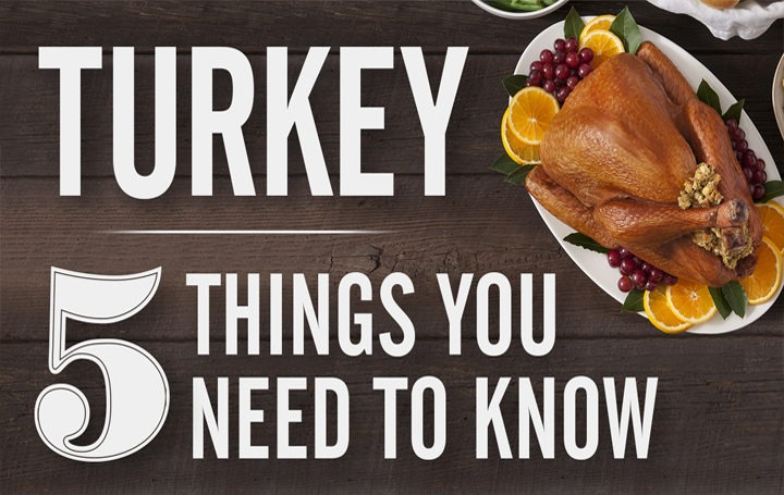 All 5 Things You Need to Know  for Perfect Turkey in One Video!