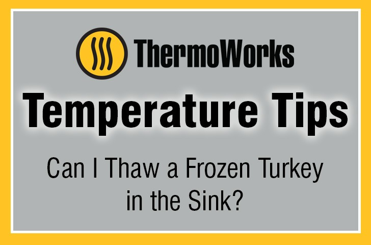Can I Thaw Turkey in Sink Banner