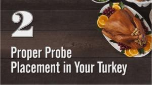 Probe Placement in Turkey blogPost