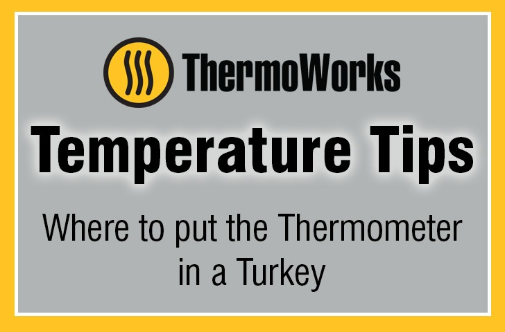 where to put thermometer in turkey banner