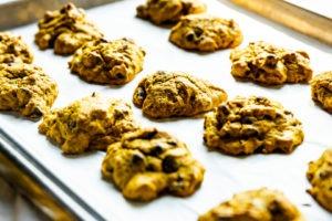 fresh pumpkin chocolate chip cookies