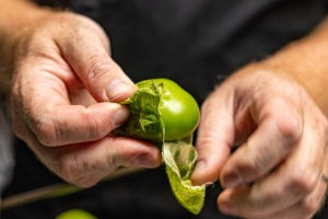 Husking the tomatillos